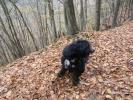 20121101_Herbstausflug_41
